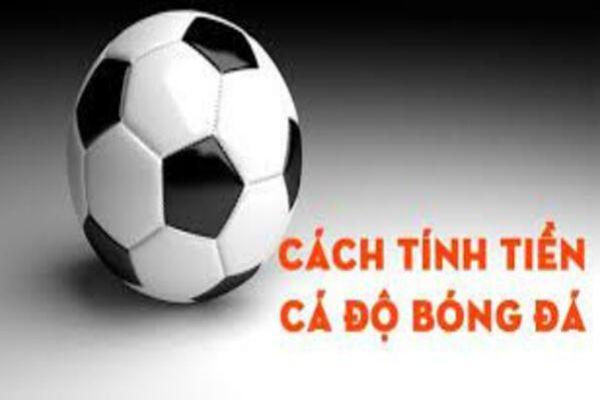 cach-tinh-tien-ca-do-bong-da-1